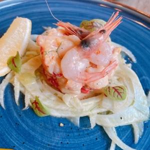 White shrimp and scallop salad