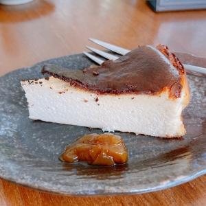 Cheese cake-ish cake made from the Sake lees