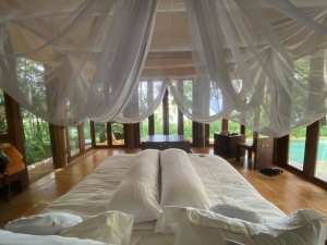 Fairy tale princess's like bedroom with a canopy