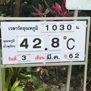 The temperature is displayed every day.